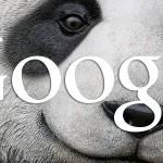[HOT] - Thuật toán Panda 4.0 được Google cập nhật ngày 20/05/2014