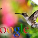 Dịch vụ SEO, Dich vu SEO - Thuật toán Hummingbird (Chim ruồi) đã giết chết tương lai SEO?